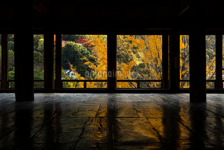 豊国神社の写真素材 [FYI03430303]