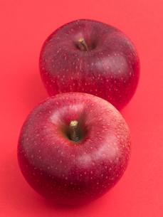 りんご シナノホッペの写真素材 [FYI03430700]
