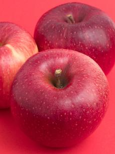 りんご シナノホッペの写真素材 [FYI03430702]