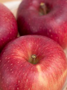 リンゴ シナノホッペの写真素材 [FYI03430704]