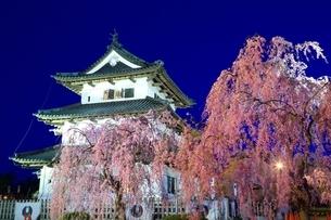 弘前城本丸と桜のライトアップの写真素材 [FYI03430800]
