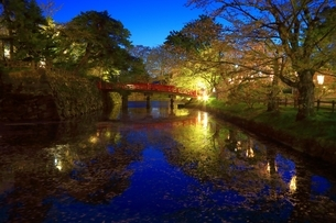 弘前城内濠のライトアップの写真素材 [FYI03430803]