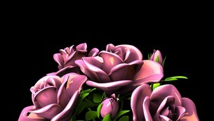 Pink Roses Bouquet On Black Text Spaceのイラスト素材 [FYI03431099]