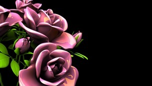 Pink Roses Bouquet On Black Text Spaceのイラスト素材 [FYI03431100]