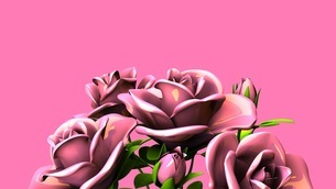 Pink Roses Bouquet On Pink Text Spaceのイラスト素材 [FYI03431103]