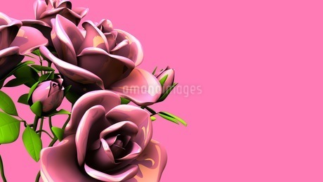 Pink Roses Bouquet On Pink Text Spaceのイラスト素材 [FYI03431104]