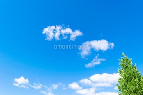 空の写真素材 [FYI03431124]