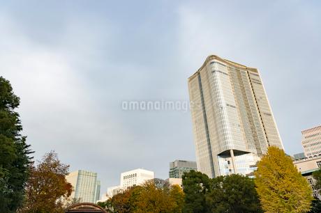 東京の風景の写真素材 [FYI03431138]