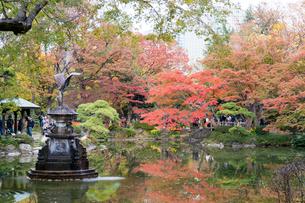 東京の風景の写真素材 [FYI03431141]