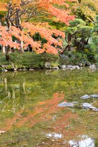 東京の風景の写真素材 [FYI03431150]