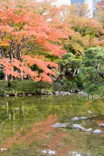 東京の風景の写真素材 [FYI03431151]