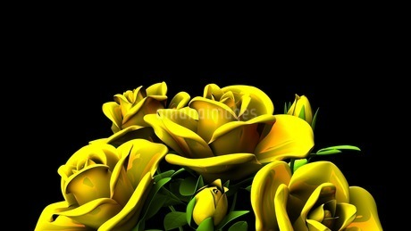 Yellow Roses Bouquet On Black Text Spaceのイラスト素材 [FYI03431177]