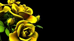 Yellow Roses Bouquet On Black Text Spaceのイラスト素材 [FYI03431178]