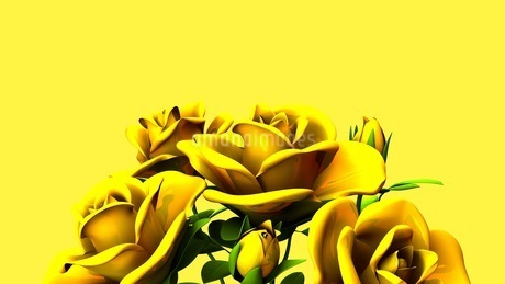 Yellow Roses Bouquet On yellow Text Spaceのイラスト素材 [FYI03431181]