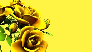 Yellow Roses Bouquet On yellow Text Spaceのイラスト素材 [FYI03431182]