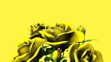 Yellow Roses Bouquet On yellow Text Spaceのイラスト素材 [FYI03431183]