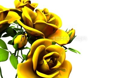 Yellow Roses Bouquet On White Text Spaceのイラスト素材 [FYI03431186]