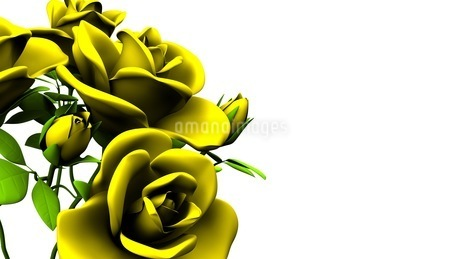 Yellow Roses Bouquet On White Text Spaceのイラスト素材 [FYI03431188]