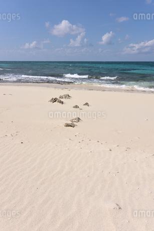 宮古島/来間島・長間浜ビーチの11月の風景の写真素材 [FYI03431355]