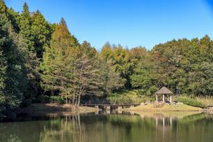 茨城 七ツ洞公園の写真素材 [FYI03431504]