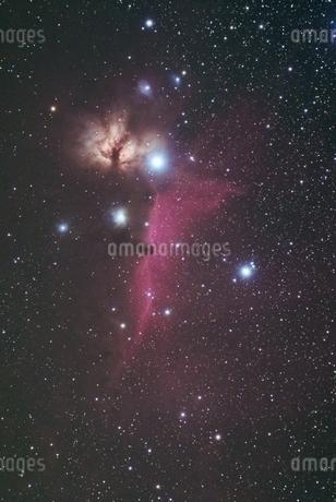 馬頭星雲の写真素材 [FYI03431615]
