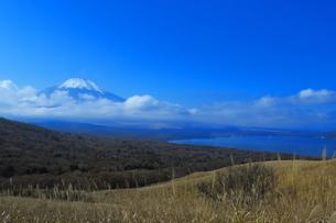 富士山と山中湖の写真素材 [FYI03431646]