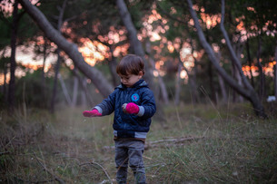 森林で赤い手袋をしたハーフの幼児が松ぼっくりを拾うの写真素材 [FYI03432001]