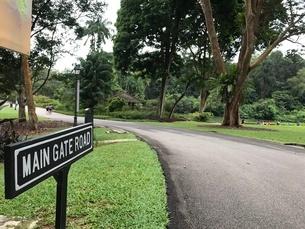 シンガポール植物園の写真素材 [FYI03432246]
