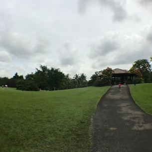 シンガポール植物園の写真素材 [FYI03432252]