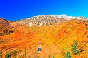秋の立山ロープウェイ 快晴の空と紅葉の写真素材 [FYI03432253]