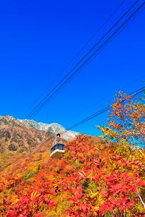 秋の立山ロープウェイ 快晴の空と紅葉の写真素材 [FYI03432257]