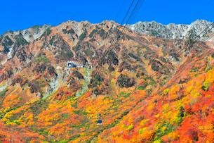 秋の立山ロープウェイ 快晴の空と紅葉の写真素材 [FYI03432265]