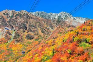 秋の立山ロープウェイ 快晴の空と紅葉の写真素材 [FYI03432267]