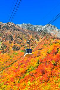 秋の立山ロープウェイ 快晴の空と紅葉の写真素材 [FYI03432268]
