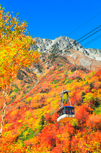 秋の立山ロープウェイ 快晴の空と紅葉の写真素材 [FYI03432273]
