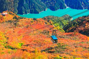 秋の立山ロープウェイと黒部ダムに遊覧船の写真素材 [FYI03432275]