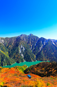 秋の立山ロープウェイ 快晴の空と紅葉の写真素材 [FYI03432278]