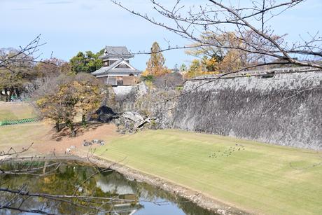 熊本城 復興中の写真素材 [FYI03432449]