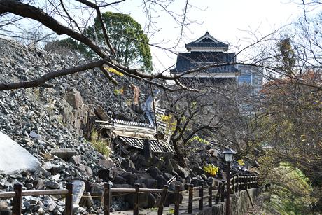 熊本城 復興中の写真素材 [FYI03432450]
