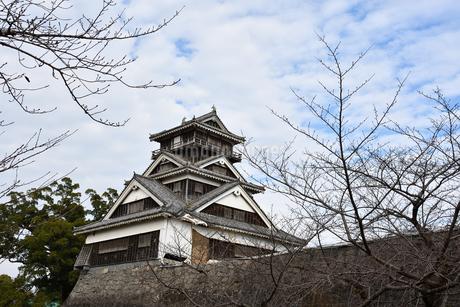 熊本城 宇都櫓の写真素材 [FYI03432452]