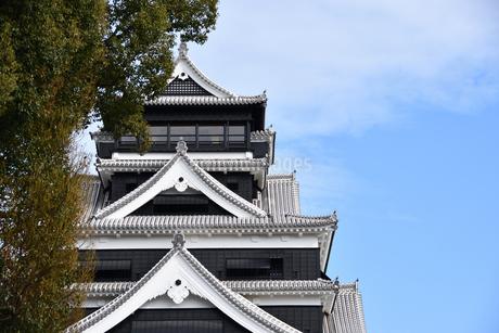熊本城と青空の写真素材 [FYI03432453]