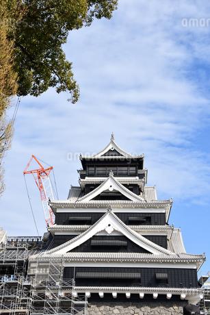 熊本城 復興中の写真素材 [FYI03432454]