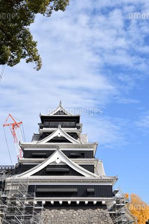 熊本城 復興中の写真素材 [FYI03432455]