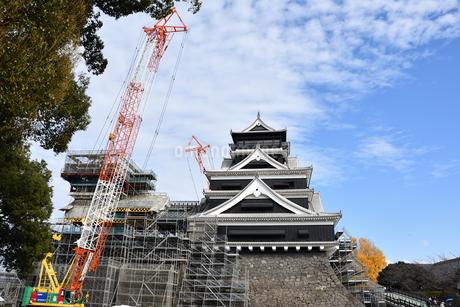 熊本城 復興中の写真素材 [FYI03432456]