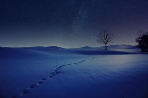 冬の風景の写真素材 [FYI03432744]