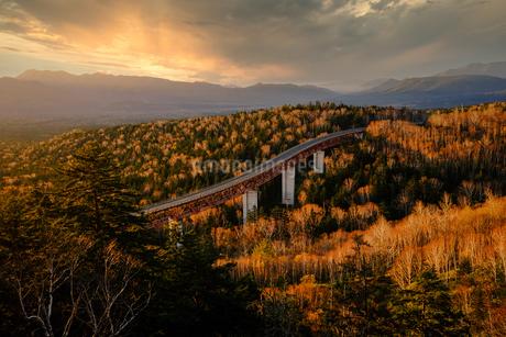 秋の三国峠の写真素材 [FYI03432756]