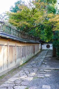 京都らしい町並み ねねの道から続く敷石の小路の写真素材 [FYI03432758]