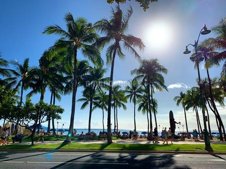 ハワイの写真素材 [FYI03433218]