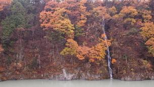 紅葉と滝の写真素材 [FYI03433654]