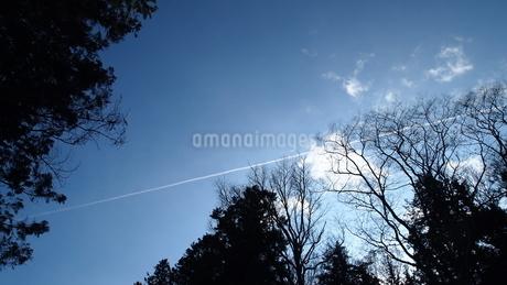 飛行機雲の写真素材 [FYI03433663]